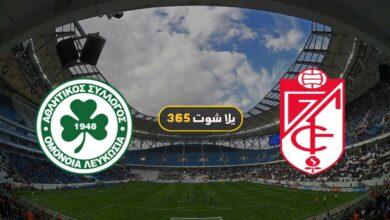 صورة مشاهدة مباراة غرناطة وأومونيا بث مباشر اليوم 26-11-2020 فى الدوري الأوروبي